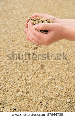 hand with stones