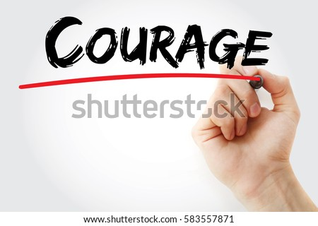 freedom writers courage