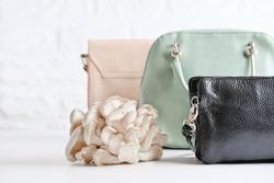 handbags made of mycelium leather, bio based sustainable alternative to leather made of mushroom spores and plant fibres. mushroom textile innovative materials. eco bio-gradable vegan leather