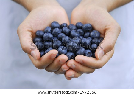 Handful of Fresh Blueberries - stock photo