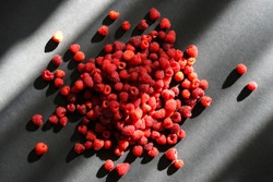 Handful of red raspberry on black background. Play of sunlights and shadows