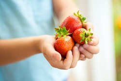 Handful of strawberries in the hands of a child.