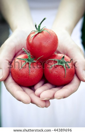 Handful of Tomato