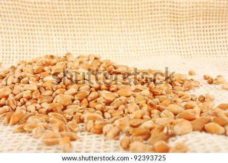 Handful of wheat ears on burlap background, foodstuff photo
