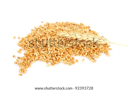 Handful of wheat ears on white background, foodstuff photo