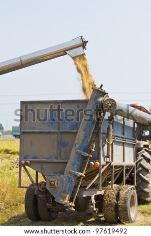 Handling of rice from combine harvester to small truck