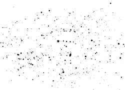 Handmade black splatter on white background. Watercolor paint spatter, spots, dots, splashing in different sizes. Backdrop for overlay or montage.