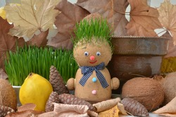Handmade doll stuffed with wood shavings and having wheat sprouts as hair. St. Andrews day is a national holiday at the end of October in Romania when people put wheat grains to germinate.