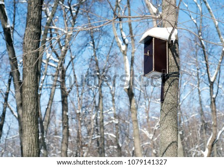 Handmade ornate wooden birdhouse attached to a large tree in a forest in winter with snow covered roof providing a home for birdlife #1079141327