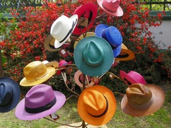 Handmade Panama Hats or Paja Toquilla hats or sombreros of different style at the traditional outdoor market in Cuenca, Ecuador. Popular souvenir from South America