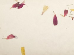 handmade paper with floral petals