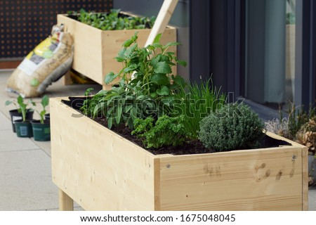 handmade raised bed on a balcony Stock photo ©