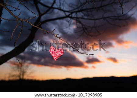 Handmade red heart on the tree - colorful sunset sky, valentine postcard or wallpaper #1017998905