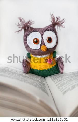 Free Photos The Owl Symbolizes Knowledge And Wisdom Avopix