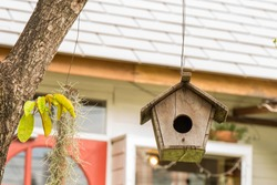 Handmade wooden birdhouse hanging from tree in backyard