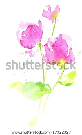Handpainted watercolour roses on white. Painted and created by photographer.
