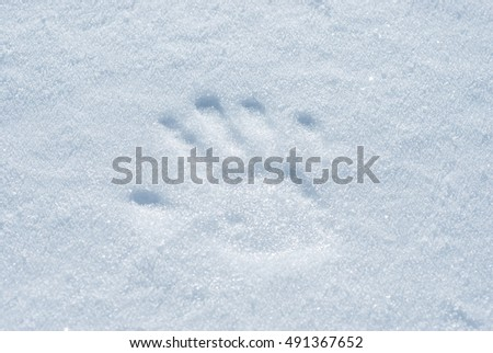 Handprint made with light pressure on the snow surface.