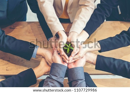 Hands adult business Team Work harmony Cupping young Plant and seeding Nurture grow Environmental and reduce global warming help earth, top view.  Ecology Concept #1107729986