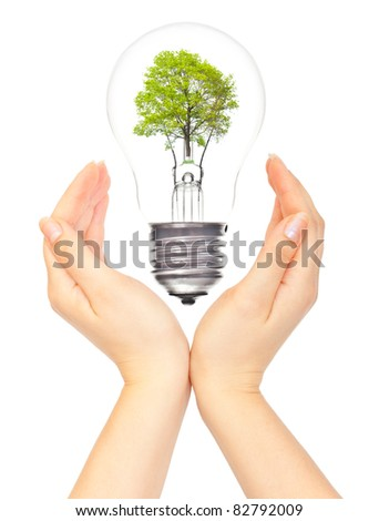 Hands and eco light bulb on white