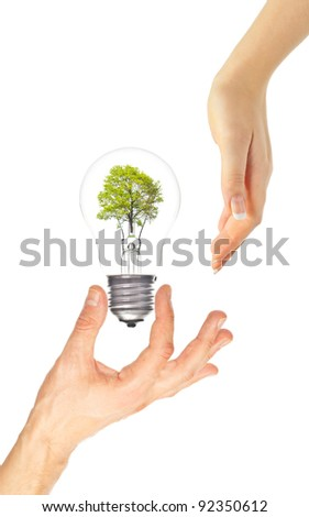Hands and eco light bulb with tree inside on white. Eco concept