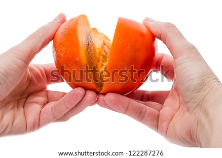 Hands breaking open a persimmon isolated on white background