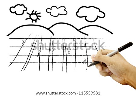 Hands drawing field and sky on white paper