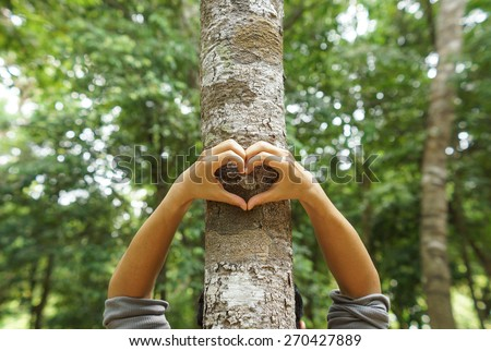 hands forming a heart shape around a big tree - protecting tree and love nature #270427889