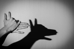 Hands gesture like dog face on gray background.