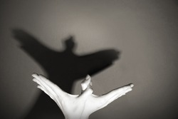 Hands gesture like dove on gray background