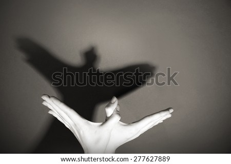 Hands gesture like dove on gray background #277627889