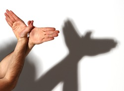 Hands gesture like dove on white background.