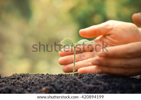 Hands growing and nurturing tree growing on fertile soil with green and yellow bokeh background / nurturing baby plant / protect nature - Shutterstock ID 420894199
