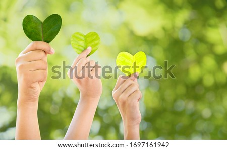 Hands holding green heart shaped tree, planting trees, loving the environment, protecting nature Nourishing the plants World Environment Day To help the world look beautiful, Forest conservation conce