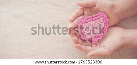 hands holding intestine shape, healthy bowel degestion, leaky gut, probiotics and prebotics for gut health, colon, gastric, stomach cancer concept Stock foto ©