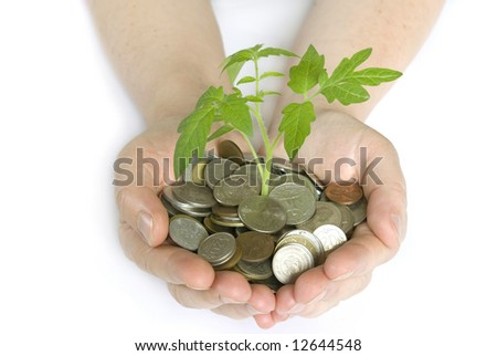 Hands holding plant in coins