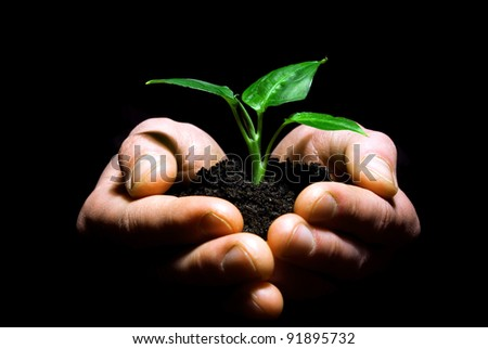 Hands holding plant in soil on black
