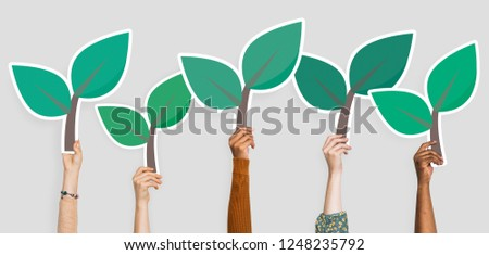 Hands holding plant leaves clipart
