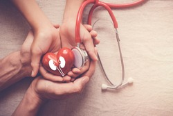 hands holding red heart and kidney with stethoscope, world kidney day, organ donor day