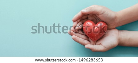 hands holding red heart on blue background, health care, love, organ donation, family insurance and CSR concept, world heart day, world health day, National Organ Donor Day
