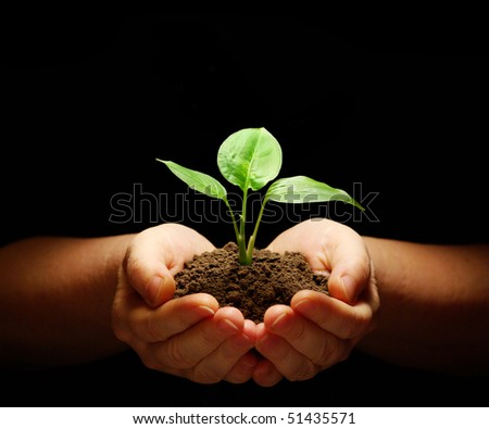 Hands holding sapling in soil on black