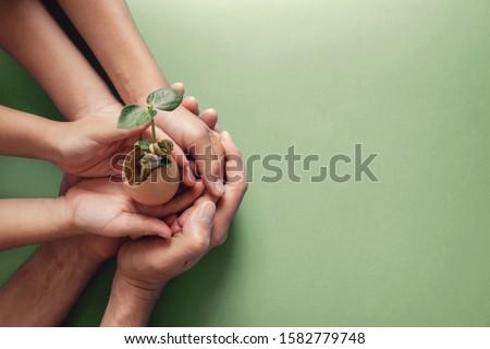 hands holding seedling in eggshells, montessori , CSR ,ESG, Eco green sustainable living,zero waste, plastic free, earth day, world environment day,responsible consumption, renewable energy ストックフォト ©