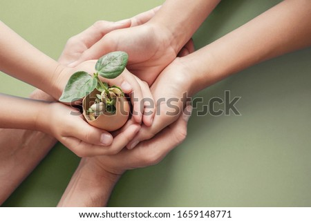 hands holding seedling in eggshells, montessori education , CSR Corporate social responsibility, Eco green sustainable living concept,zero waste, plastic free,world food day, responsible comsumption