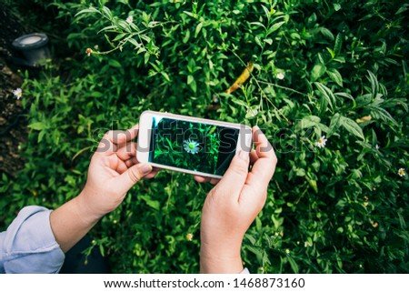 Hands holding smart phone for taking photo of flower #1468873160