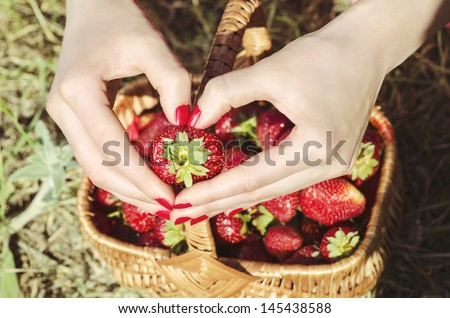Hands holding strawberry on the background of basket with fresh tasty strawberries. Ripe strawberry in female hands with red nails and fingers folded in the form of heart. outdoors in forest