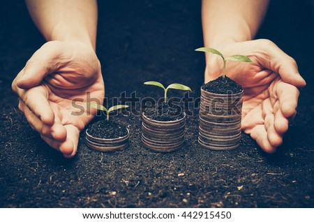 hands holding trees growing on coins / csr / sustainable development / economic growth / trees growing on stack of coins / Business with environmental concern