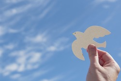 Hands holding white dove bird on blue cirrus cloud sky background, international day of peace, world peace day concept, csr responsible business, animal rights and hope concept