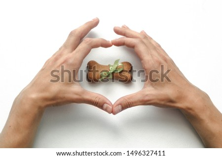 hands in heart shaped and bone shaped biscuits on white background. Concept of love, healthcare, friendship of people and animal. I love dog #1496327411
