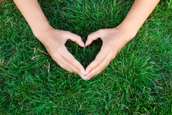 Hands in the grass in the form of heart.hands holding green heart shaped grass/ green baby plants arranged in a heart shape / love nature / save the world / heal the world / environmental preservation