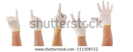 Hands in working cotton gloves