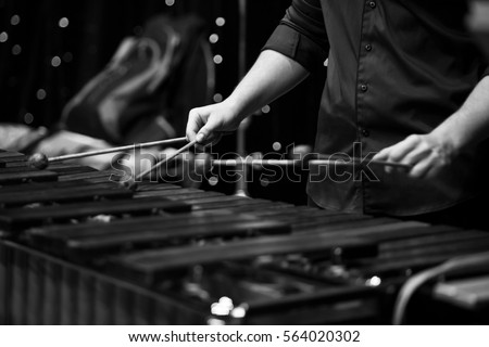 Hands musician playing the xylophone in black and white #564020302